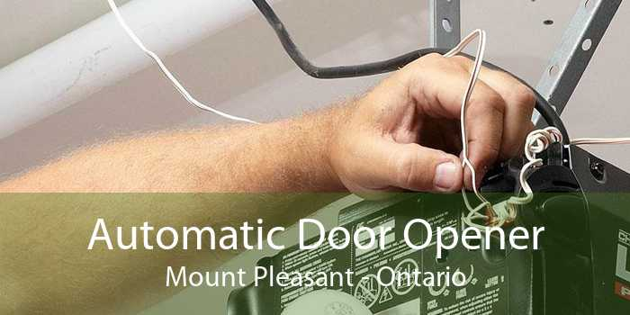 Automatic Door Opener Mount Pleasant - Ontario