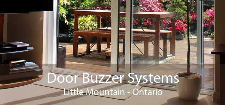 Door Buzzer Systems Little Mountain - Ontario