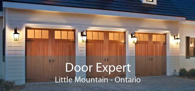 Door Expert Little Mountain - Ontario