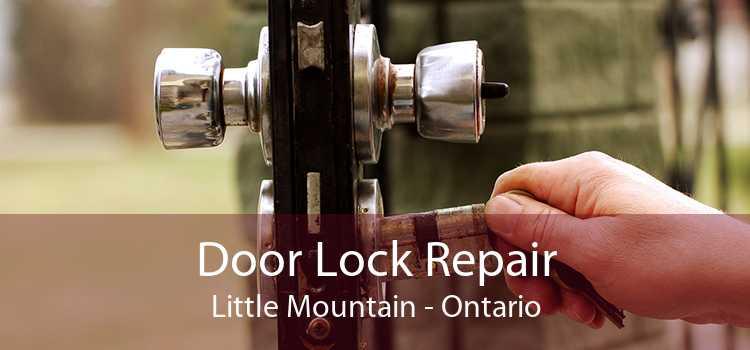 Door Lock Repair Little Mountain - Ontario