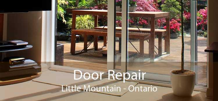 Door Repair Little Mountain - Ontario