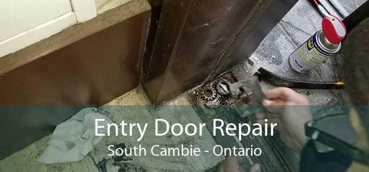 Entry Door Repair South Cambie - Ontario