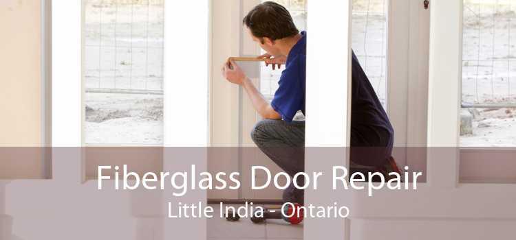 Fiberglass Door Repair Little India - Ontario