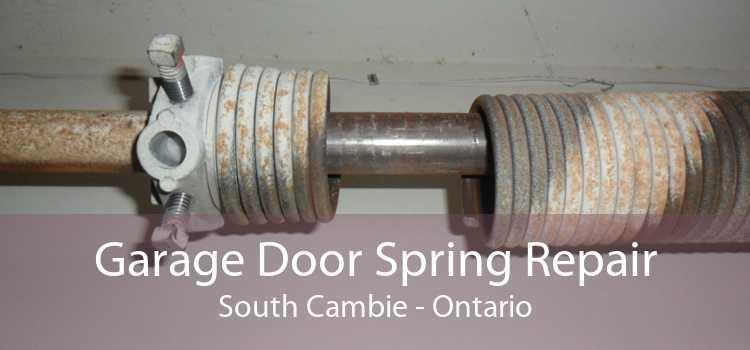 Garage Door Spring Repair South Cambie - Ontario