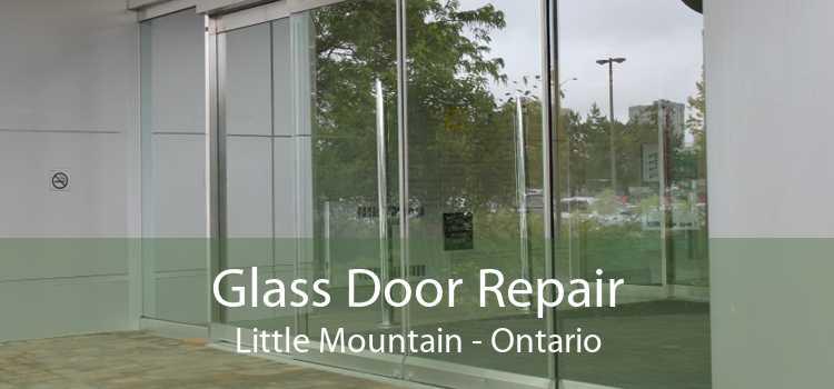 Glass Door Repair Little Mountain - Ontario