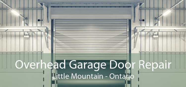 Overhead Garage Door Repair Little Mountain - Ontario