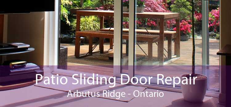Patio Sliding Door Repair Arbutus Ridge - Ontario