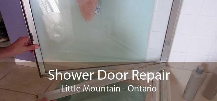 Shower Door Repair Little Mountain - Ontario