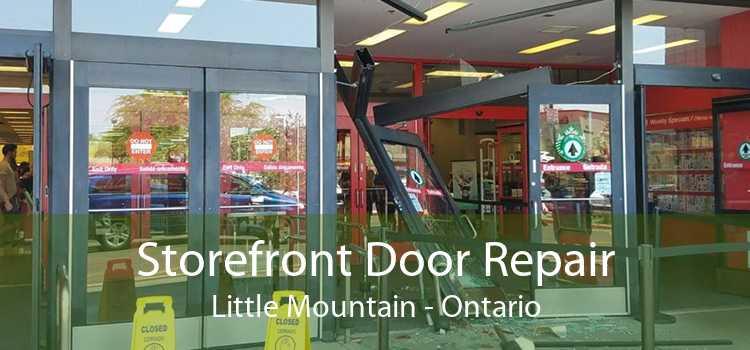 Storefront Door Repair Little Mountain - Ontario